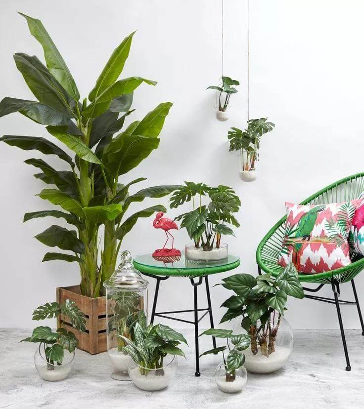 green-plants-decoration